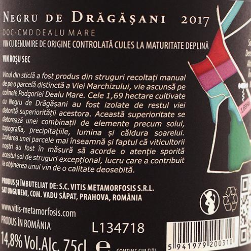 NEGRU DE DRAGASANI 2017
